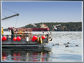 Lobster Fishing Accident
